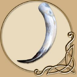 Large Drinking Horn